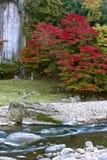 Ιαπωνικό φθινόπωρο sakurai-Tonomine ταξίδι του Νάρα, Ιαπωνία Στοκ Εικόνες