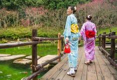 Ιαπωνικό sakura επίσκεψης κιμονό επιδέσμου Στοκ Εικόνες