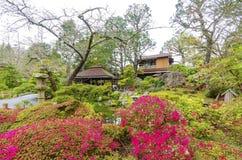 ιαπωνικό SAN Francisco τσάι κήπων Στοκ Εικόνα