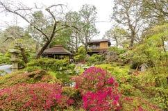 ιαπωνικό SAN Francisco τσάι κήπων Στοκ Εικόνες