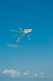 διασκέδαση παροξυσμού πετάγματος νομών Απριλίου του 2008 ετήσια frederick που έχει τους ανθρώπους έβδομη ληφθείσα sherando Βιρτζί Στοκ εικόνες με δικαίωμα ελεύθερης χρήσης