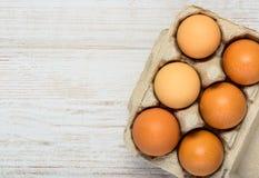 Διαστημική περιοχή χαρτοκιβωτίων και αντιγράφων αυγών Στοκ φωτογραφίες με δικαίωμα ελεύθερης χρήσης