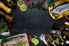 Διαστημικό πλαίσιο ψαριών και αντιγράφων Στοκ εικόνα με δικαίωμα ελεύθερης χρήσης