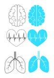 Ιατρικά εικονίδια για τον Ιστό Στοκ Εικόνες
