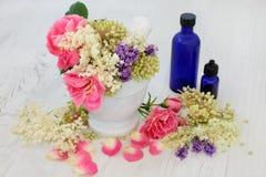 Ιατρικά λουλούδια και χορτάρια Στοκ φωτογραφίες με δικαίωμα ελεύθερης χρήσης