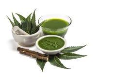 Ιατρικά φύλλα Neem στο κονίαμα και το γουδοχέρι με την κόλλα neem, το χυμό και τους κλαδίσκους στοκ εικόνα