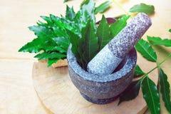 Ιατρικά φύλλα neem στο κονίαμα και το γουδοχέρι Στοκ Εικόνες