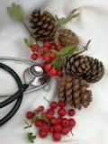 Ιατρικές κάρτες Χριστουγέννων Στοκ Εικόνα