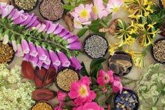 Ιατρική επιλογή λουλουδιών και χορταριών Στοκ Εικόνες