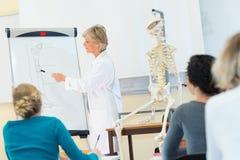 Ιατρική σπουδαστών που εξετάζει το ανατομικό πρότυπο στην τάξη στοκ φωτογραφία με δικαίωμα ελεύθερης χρήσης