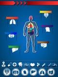 Ιατρική Infographic Στοκ εικόνες με δικαίωμα ελεύθερης χρήσης