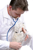ιατρικός επαγγελματίας Στοκ εικόνα με δικαίωμα ελεύθερης χρήσης