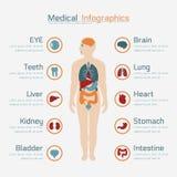 Ιατρικός infographic απεικόνιση αποθεμάτων