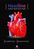Ιατρικό πρότυπο εκθέσεων A4 Σχέδιο κάλυψης με τη χαμηλή πολυ ανθρώπινη καρδιά στοκ εικόνες