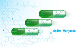 Ιατρικό σχέδιο καψών μαριχουάνα με τη χημική μοριακή σύσταση δομών καννάβεων Στοκ εικόνες με δικαίωμα ελεύθερης χρήσης