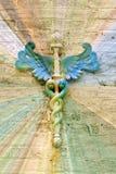 ιατρικό σύμβολο παθολόγ&ome στοκ φωτογραφία