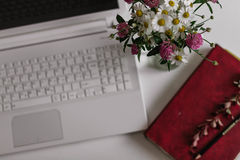 διαφορετικά λουλούδι&alph στοκ φωτογραφίες