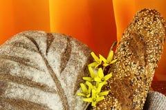 διαφορετικοί τύποι ψωμι&omic Στοκ Εικόνες