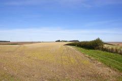 Διαχωριστικός φράχτης και καλλιεργήσιμο έδαφος Στοκ φωτογραφίες με δικαίωμα ελεύθερης χρήσης
