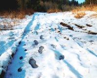 διαδρομές Στοκ φωτογραφία με δικαίωμα ελεύθερης χρήσης