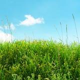 λιβάδι και μπλε ουρανός χλόης Στοκ φωτογραφίες με δικαίωμα ελεύθερης χρήσης