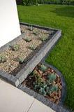 Ιδέα σχεδίου γωνιών σπιτιών: πέτρα που πλαισιώνει όπως, evergreens και lavender εγκαταστάσεις, πεζούλι Στοκ Εικόνα
