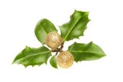 Ιερά φύλλα με τα μπιχλιμπίδια Στοκ Εικόνες