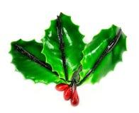 Ιερά φύλλα Στοκ Εικόνες