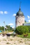 Ιερή αναζοωγόνηση Χριστού εκκλησιών και καθεδρικών ναών τριάδας στο μοναστήρι Goritsy της περιοχής Vologda αναζοωγόνησης Στοκ Εικόνα