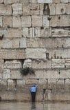Ιερουσαλήμ, δυτικός τοίχος, προσευχή στοκ εικόνα