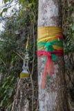 Ιερό δέντρο με τη χρωματισμένη κορδέλλα στη φύση Στοκ εικόνα με δικαίωμα ελεύθερης χρήσης