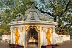 Ιερό βουδιστικό δέντρο της Maha Bodhi, Σρι Λάνκα Στοκ Φωτογραφία