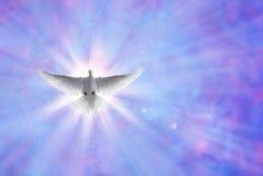 Ιερό περιστέρι πνευμάτων στο λάμποντας ουρανό με τις ακτίνες στοκ εικόνες με δικαίωμα ελεύθερης χρήσης