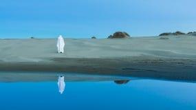 Ιησούς Desert Στοκ Φωτογραφία