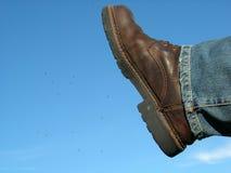 ΙΙΙ παπούτσι εντόμων Στοκ εικόνες με δικαίωμα ελεύθερης χρήσης