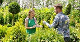 Ικανοποιημένοι συνάδελφοι του πράσινου κήπου στην εργασία απόθεμα βίντεο