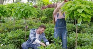 Ικανοποιημένο ζευγών στον κήπο φιλμ μικρού μήκους