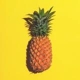 ικανοποιημένο καρπού καλοκαίρι σπόρου ροδιών κόκκινο Ανανάς στο φωτεινό κίτρινο υπόβαθρο Στοκ Φωτογραφίες