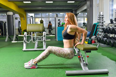 Ικανότητα, αθλητισμός, που ασκεί τον τρόπο ζωής - κατάλληλη γυναίκα που κάνει triceps τις εμβυθίσεις στη γυμναστική Ασκήσεις με τ Στοκ φωτογραφία με δικαίωμα ελεύθερης χρήσης
