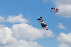 Ικτίνοι που πετούν σε έναν μπλε ουρανό Ικτίνοι των διάφορων μορφών Στοκ Εικόνες
