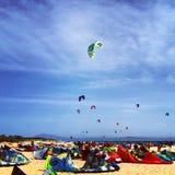 Ικτίνοι στην παραλία Στοκ Εικόνες
