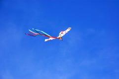 ικτίνος κανένας ουρανός Στοκ φωτογραφία με δικαίωμα ελεύθερης χρήσης