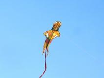 Ικτίνος Λόρδου Hanuman στο διεθνές φεστιβάλ ικτίνων, Ahmedabad Στοκ Εικόνες