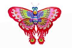 Ικτίνος πεταλούδων Στοκ Φωτογραφία
