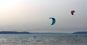 Ικτίνος που κάνει σερφ, νησί λιμενοβραχιόνων Στοκ φωτογραφία με δικαίωμα ελεύθερης χρήσης