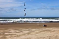 Ικτίνος που πετά στην ακτή του Όρεγκον παραλιών Στοκ εικόνα με δικαίωμα ελεύθερης χρήσης