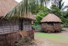 Ινδία αγροτική Στοκ φωτογραφίες με δικαίωμα ελεύθερης χρήσης