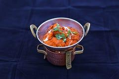 Ινδικά patties ragda masala pakoda kulcha aloo ψωμιού πασπαλίζουν το μανιτάρι tikka κοτόπουλου papdi choley βόρειου roti τσαγιού  στοκ εικόνα