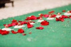 Ινδική γαμήλια φωτογραφία στοκ φωτογραφία με δικαίωμα ελεύθερης χρήσης