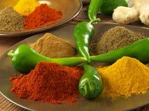 Ινδική γεύση Στοκ φωτογραφία με δικαίωμα ελεύθερης χρήσης